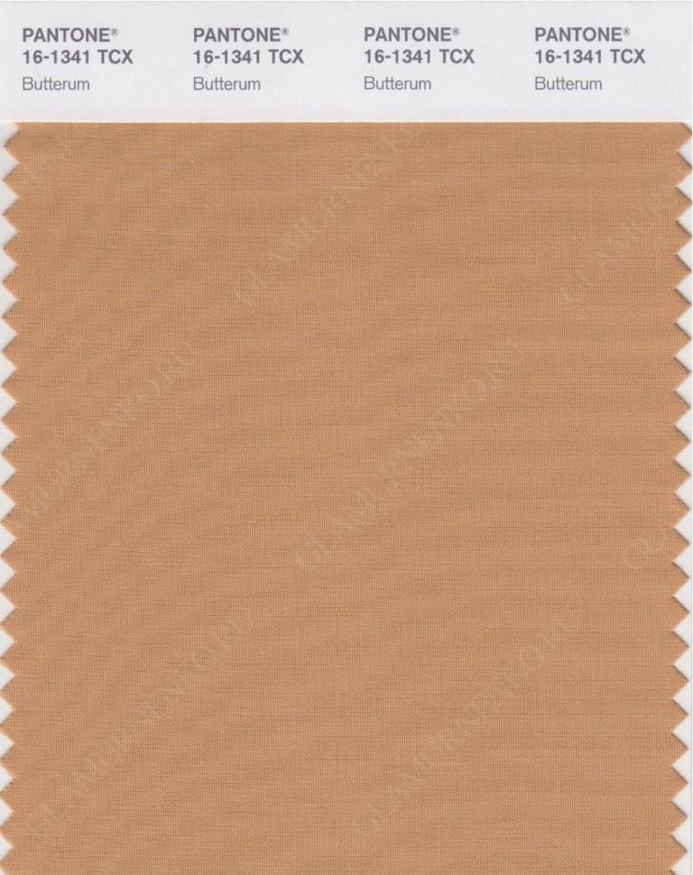пример цвета PANTONE 16-1341