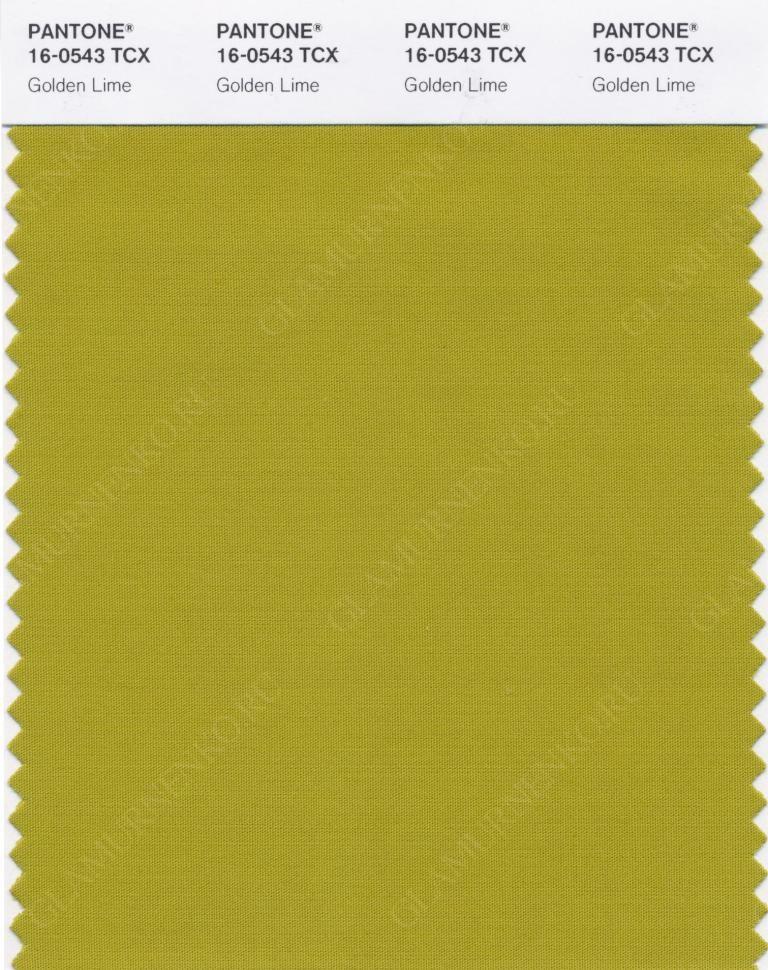 пример PANTONE 16-0543