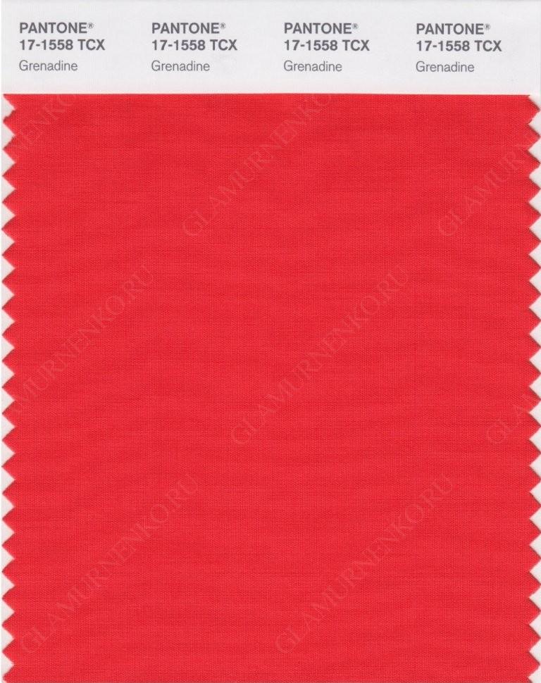 пример цвета PANTONE 17-1558