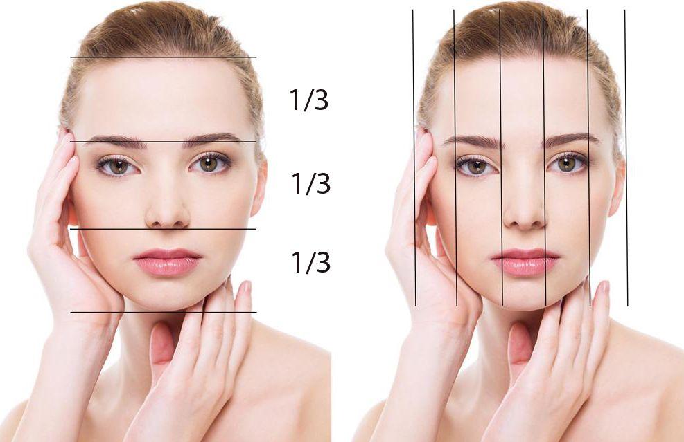 Вычислить идеальные пропорции и форму лица можно соотнеся между собой основные его части