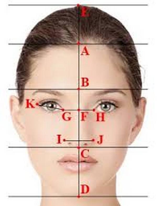 Взаимное расположение бровей и зрачков глаз – важные параметры при определении пропорциональной формы лица