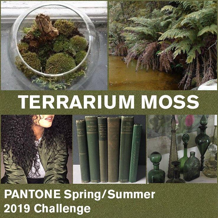 Terrarium Moss (Террариумный мох) – «старший брат» оттенка Pepper Stem