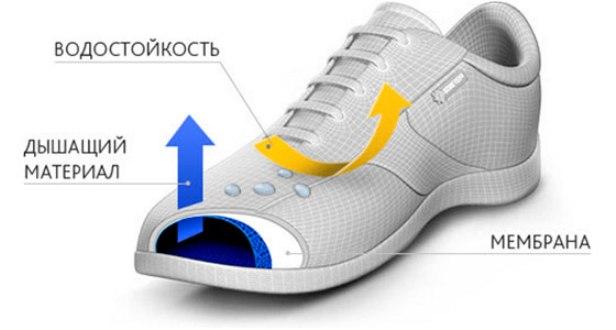 Основные характеристики качественных спортивных кроссовок для зимы.