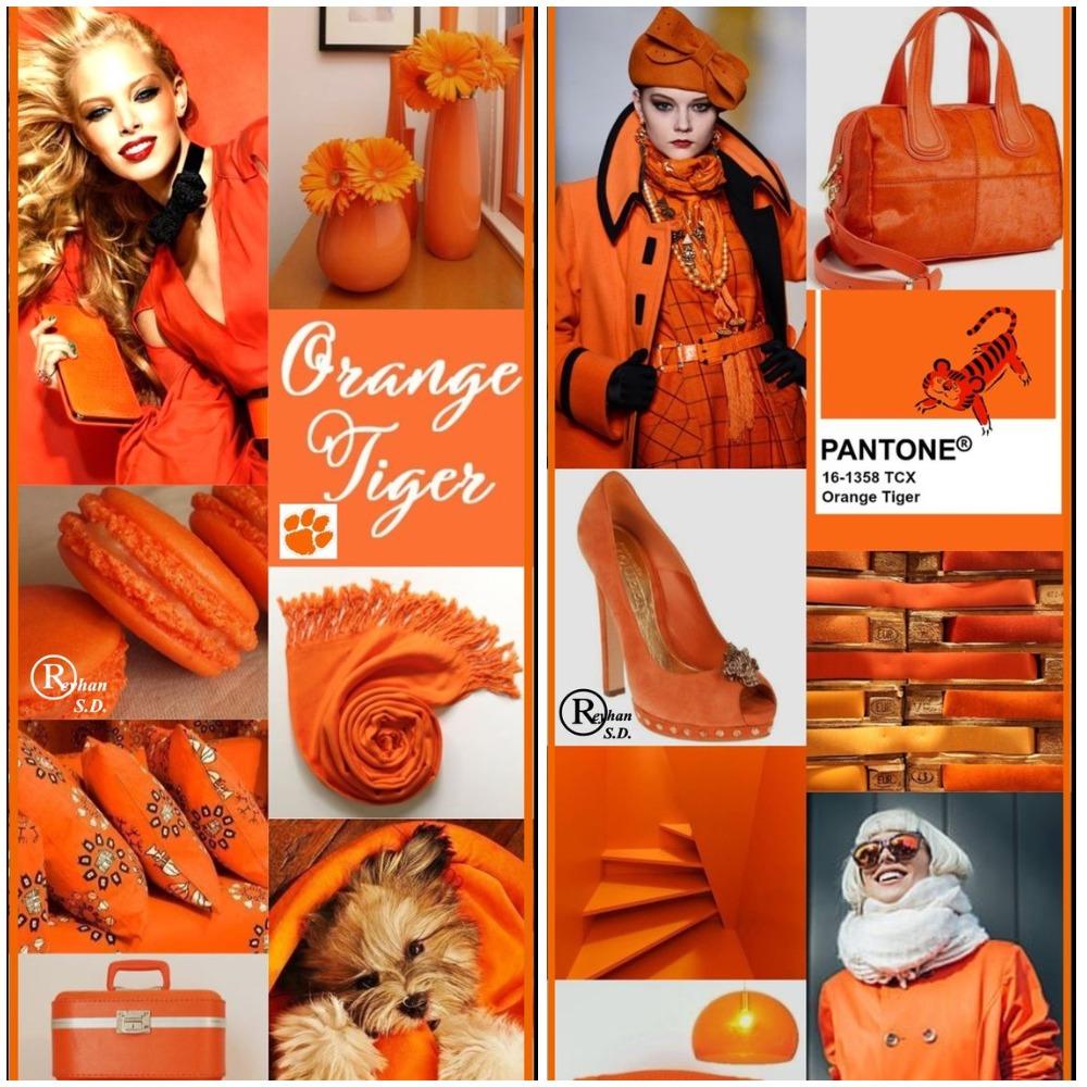 Если вам свойственны энергичность, смелость и решительность, вам, несомненно, понравится яркий оттенок Orange Tiger