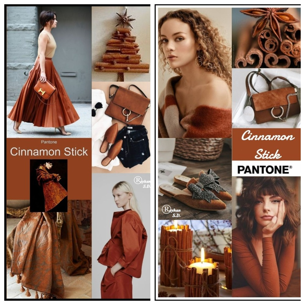 PANTONE 18-1345 Cinnamon Stick (Палочка корицы)