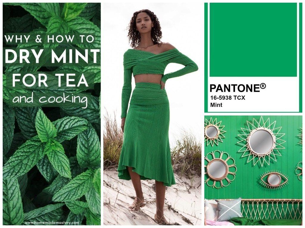 PANTONE 16-5938 Mint (Мята)